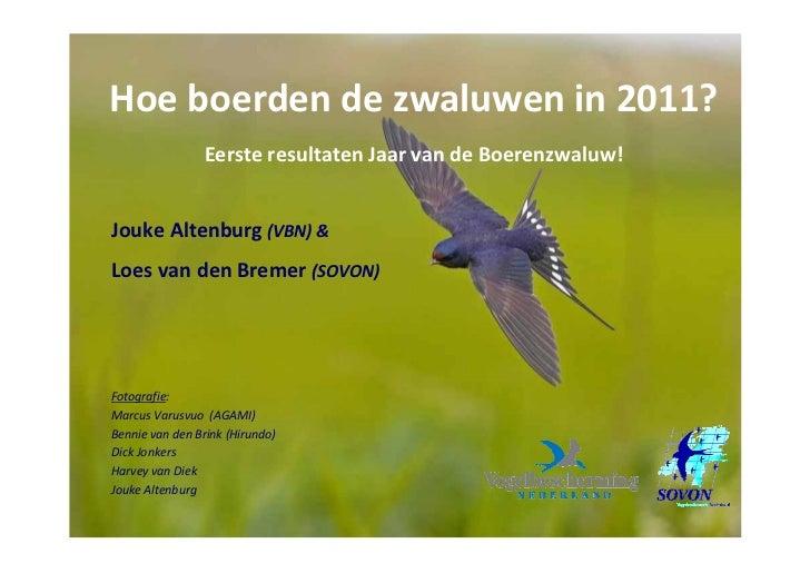 Hoe boerden de zwaluwen in 2011?                Eerste resultaten Jaar van de Boerenzwaluw!Jouke Altenburg (VBN) &Loes van...