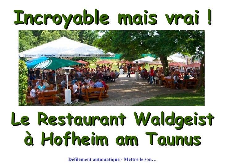 Incroyable mais vrai ! Le Restaurant Waldgeist à Hofheim am Taunus Défilement automatique - Mettre le son…
