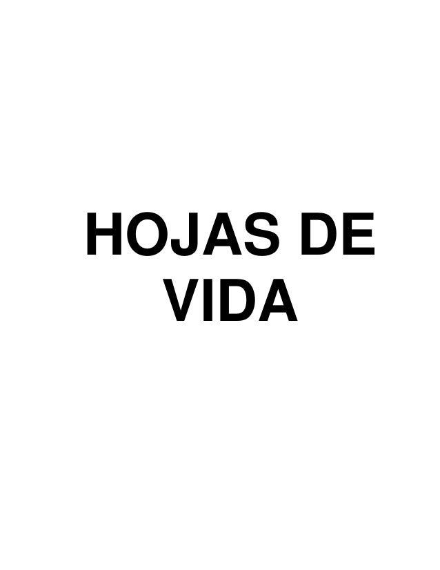 HOJAS DE VIDA