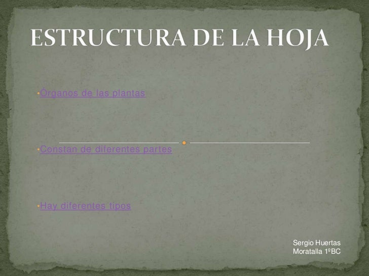 •Órganos de las plantas•Constan de diferentes partes•Hay diferentes tipos                                Sergio Huertas   ...