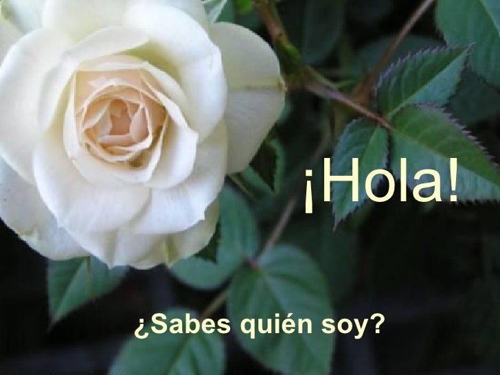 Hola Sabes Quien Soy