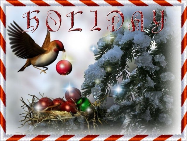 Holiday  ildy