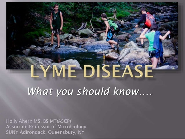 Holly Ahern - Lyme Disease: What You Should Know...