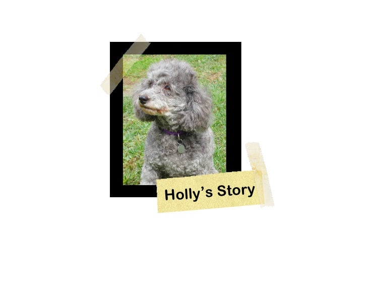 H olly's Story