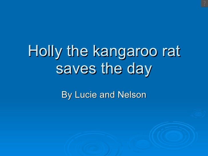 Holly The Kangaroo Rat