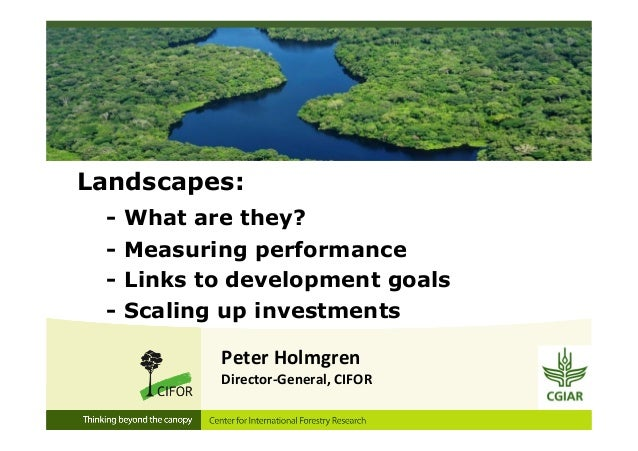 Landscapes:- What are they?- Measuring performance- Links to development goals- Scaling up investmentsPeter