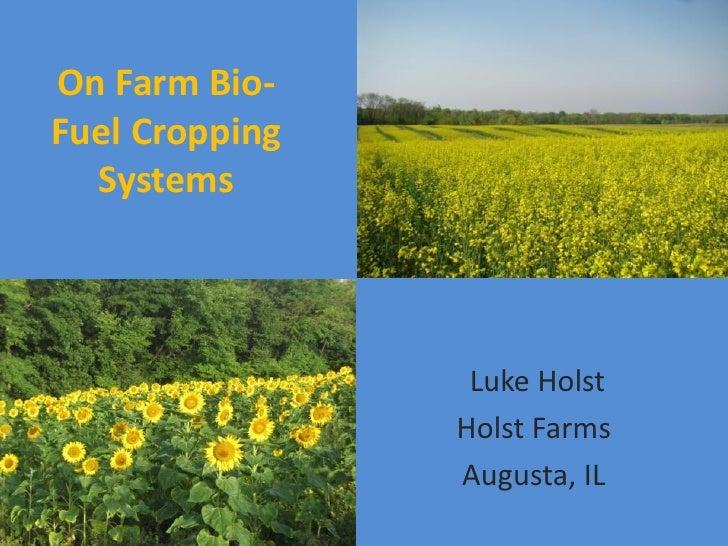 On Farm Bio-Fuel Cropping  Systems                 Luke Holst                Holst Farms                Augusta, IL