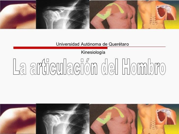 Universidad Autónoma de Querétaro Kinesiología La articulación del Hombro