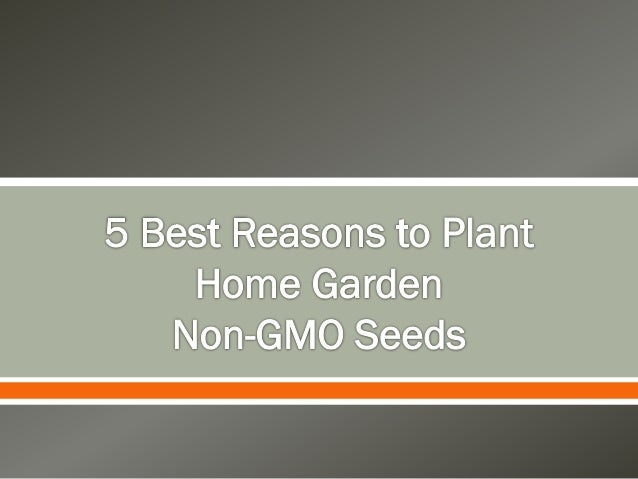 5 Best Reasons to Plant Home Garden Organic Seeds