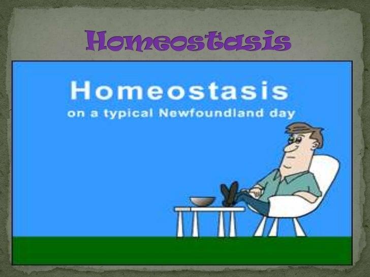 Homeostasis<br />