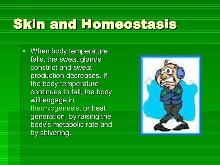 Back > Gallery For > Homeostasis Pictures For Kids