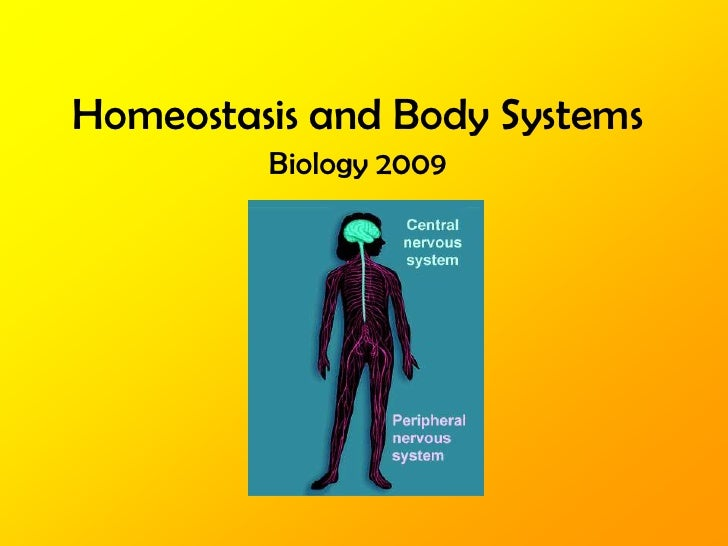Homeostasis and Body Systems<br />Biology 2009<br />