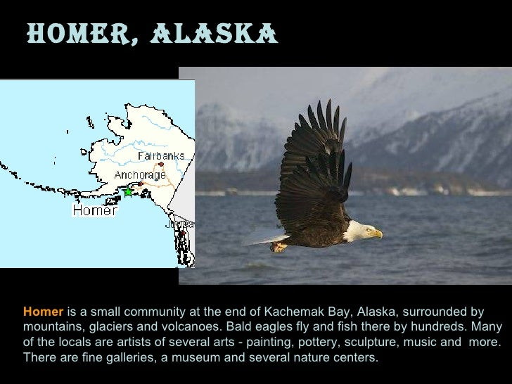 Homer, Alaska Homer  is a small community at the end of Kachemak Bay, Alaska, surrounded by mountains, glaciers and volcan...