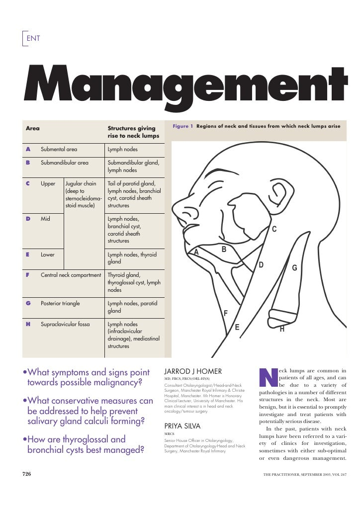 ENT     Management  Area                                Structures giving               Figure 1 Regions of neck and tissu...