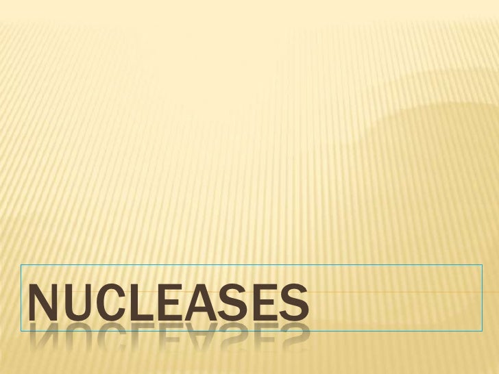 NUCLEASES