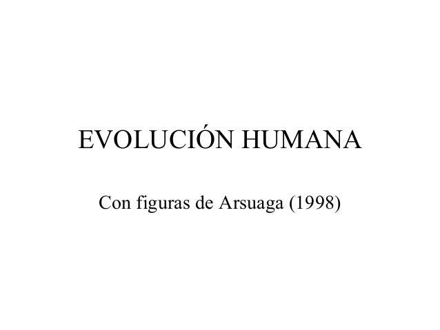 EVOLUCIÓN HUMANA Con figuras de Arsuaga (1998)