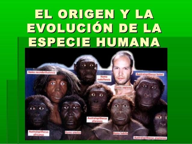 EL ORIGEN Y LAEL ORIGEN Y LAEVOLUCIÓN DE LAEVOLUCIÓN DE LAESPECIE HUMANAESPECIE HUMANA