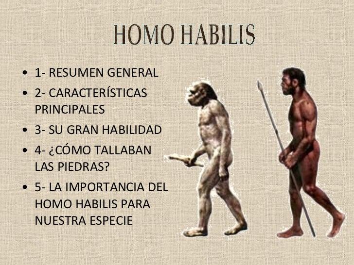 Homo Habilis-