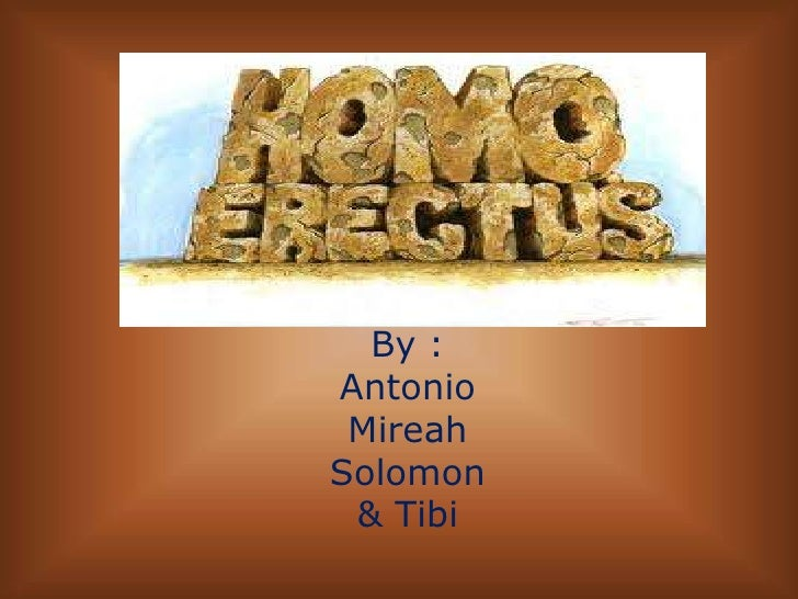 By :<br />Antonio<br />Mireah<br />Solomon<br />& Tibi<br />