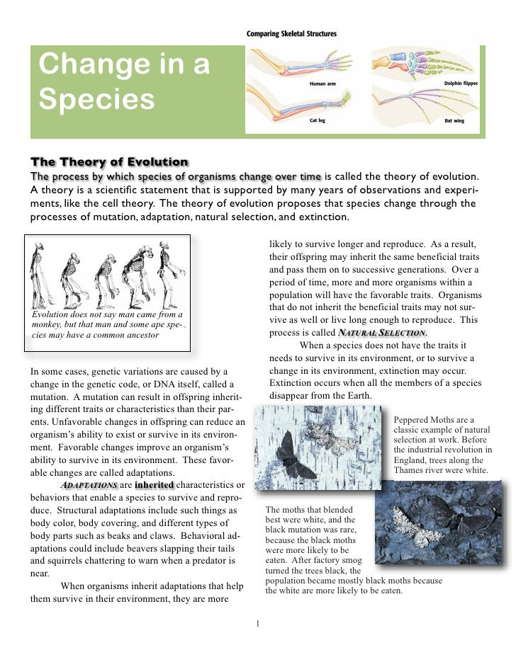 Change in a  Species The Theory of Evolution The process by which species of organisms change over time is called the theo...