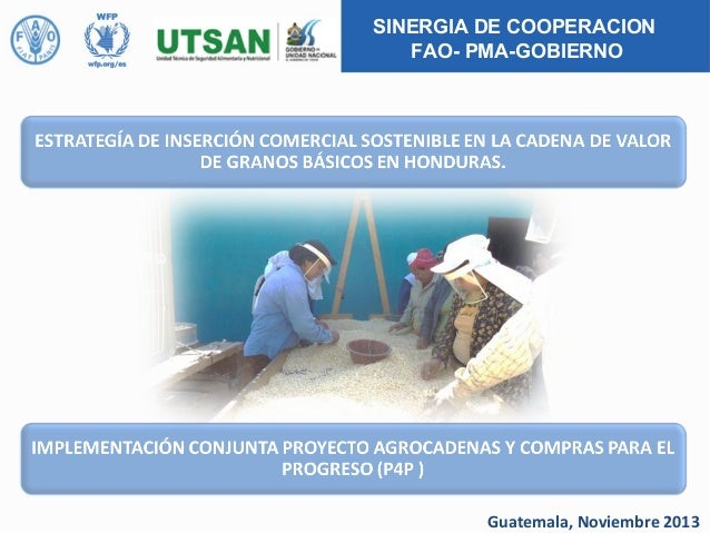 SINERGIA DE COOPERACION FAO- PMA-GOBIERNO  Guatemala, Noviembre 2013