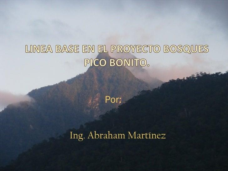 Por:Ing. Abraham Martínez