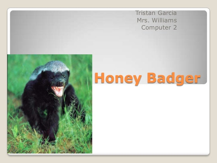 Tristan Garcia    Mrs. Williams      Computer 2Honey Badger