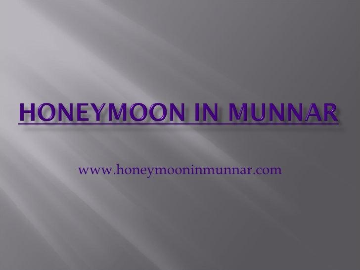 honeymoon in munnar|kerala honeymoon|honeymoon | honeymoon destinations | honeymoon packages | honeymoon to kerala | kerala | kerala tour package | kerala tour packages|munnar | thekkady