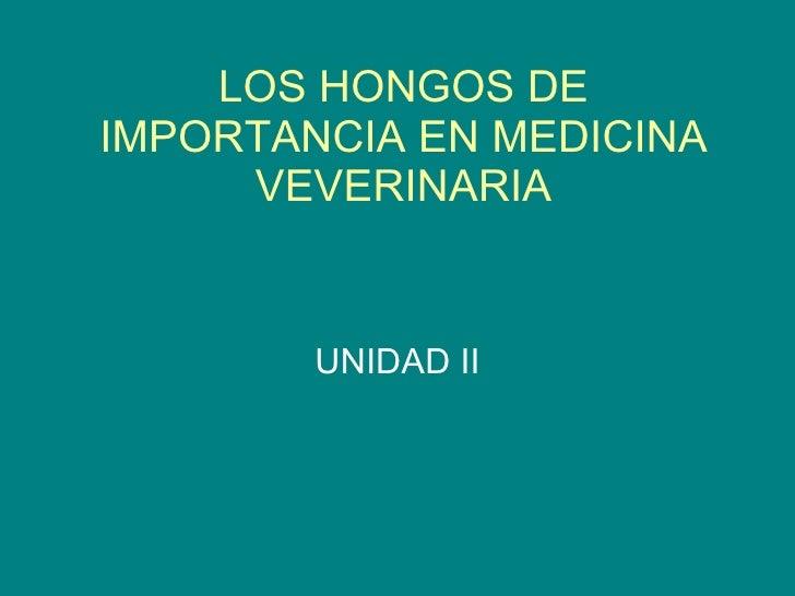 LOS HONGOS DE IMPORTANCIA EN MEDICINA VEVERINARIA UNIDAD II