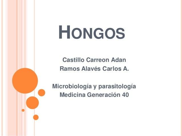 HONGOS Castillo Carreon Adan Ramos Alavés Carlos A. Microbiología y parasitología Medicina Generación 40