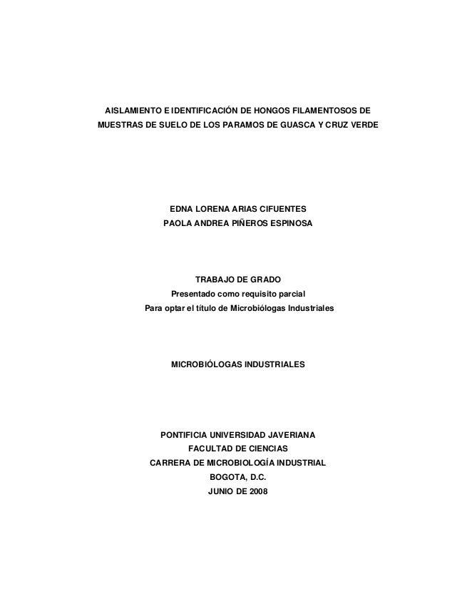 AISLAMIENTO E IDENTIFICACIÓN DE HONGOS FILAMENTOSOS DEMUESTRAS DE SUELO DE LOS PARAMOS DE GUASCA Y CRUZ VERDE             ...