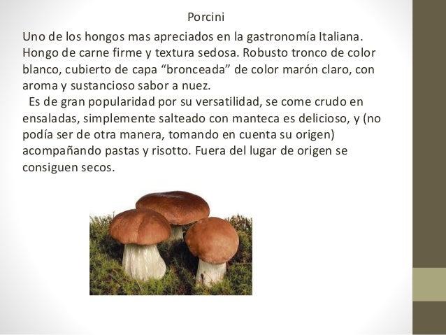 Hongos y setas for Como se cocinan los hongos