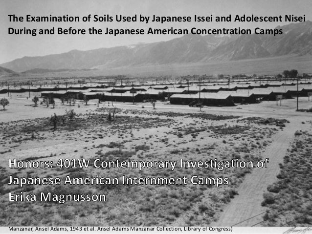 japanese internment camps research paper