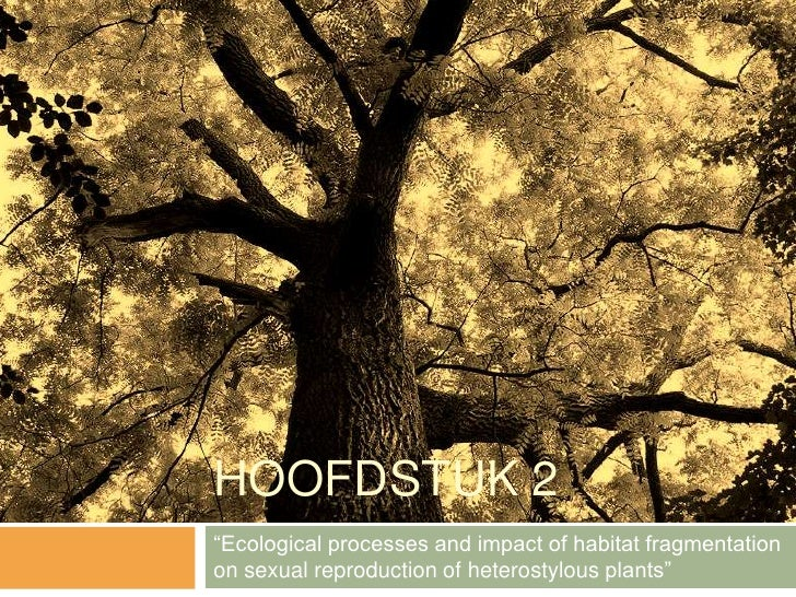 "HOOFDSTUK 2""Ecological processes and impact of habitat fragmentationon sexual reproduction of heterostylous plants"""