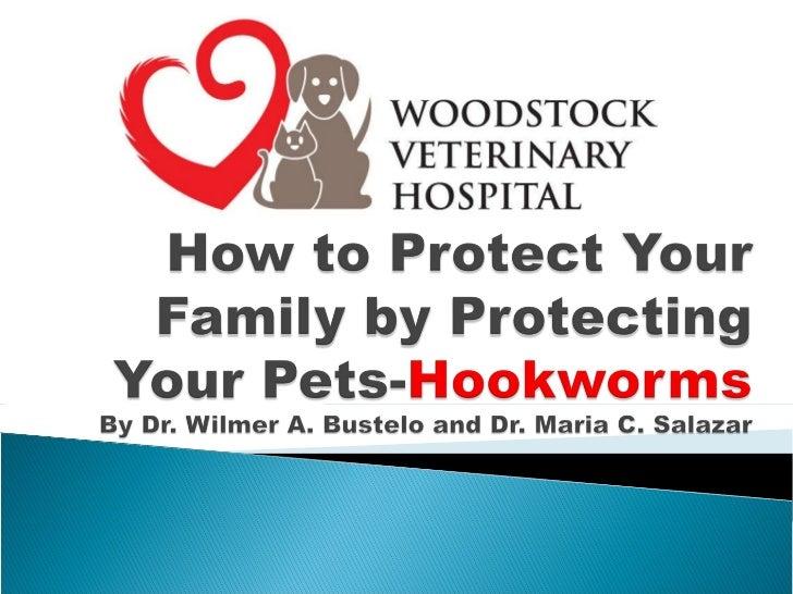 Woodstock Vet Clinic-Hookworms
