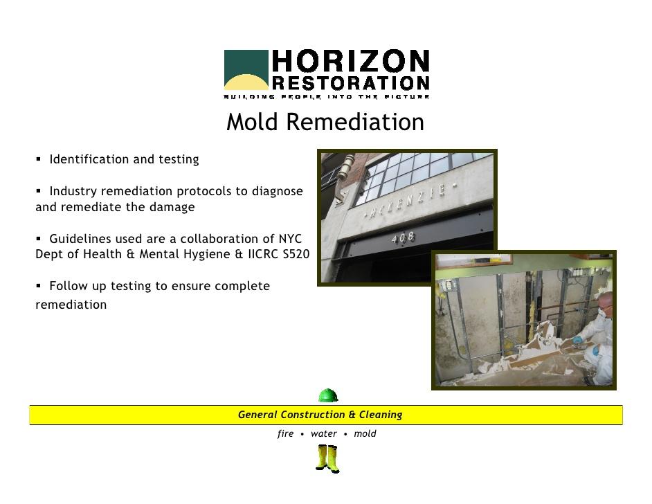 horizon-restoration- ...
