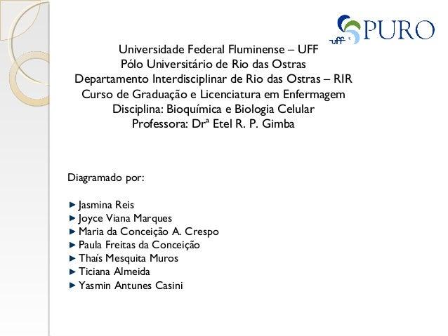 Universidade Federal Fluminense – UFF Pólo Universitário de Rio das Ostras Departamento Interdisciplinar de Rio das Ostras...