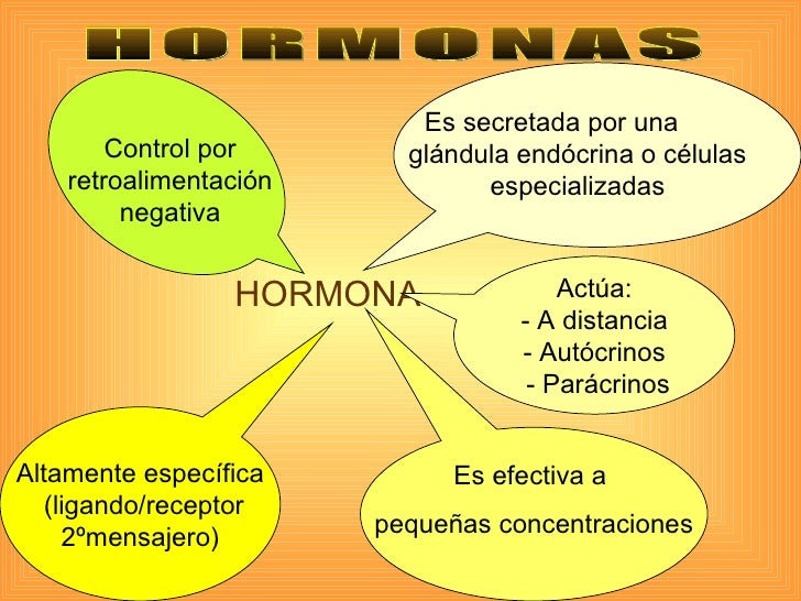 hormonas esteroides gonadales pdf