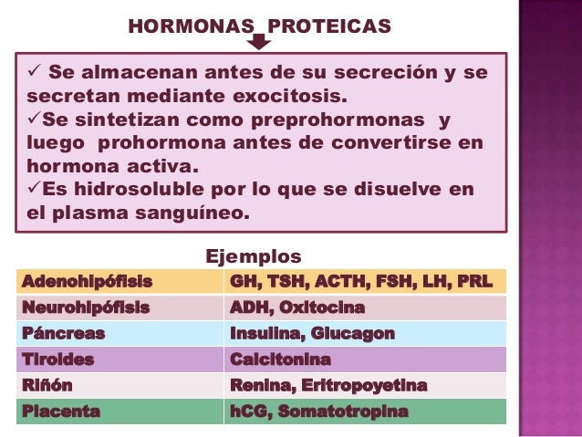 hormonas peptidicas esteroideas