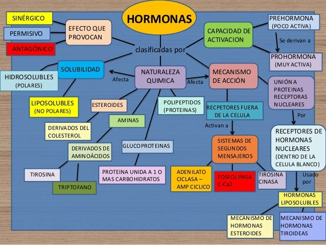 efectos de los esteroides yahoo