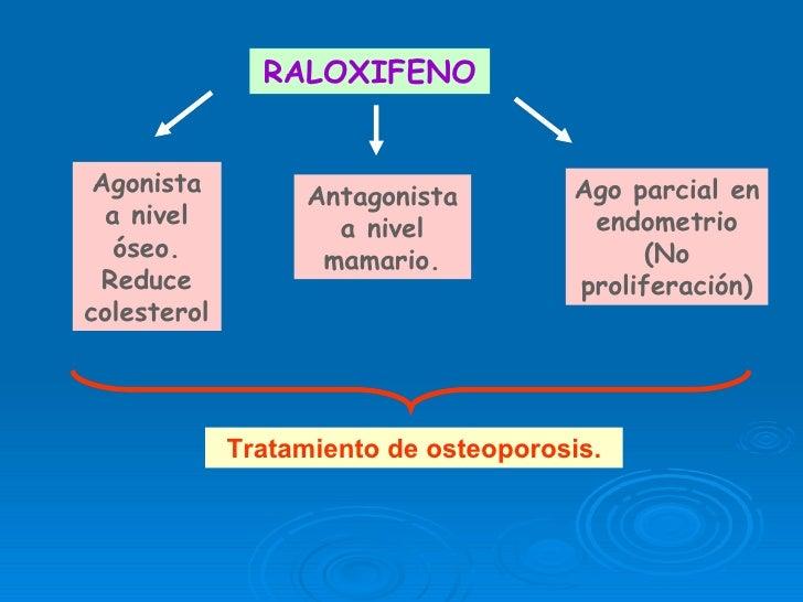 esteroidogenesis ovarica