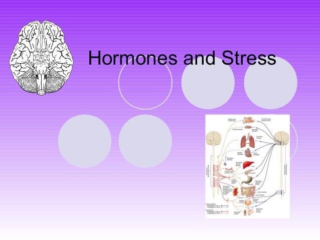 Hormones and Stress