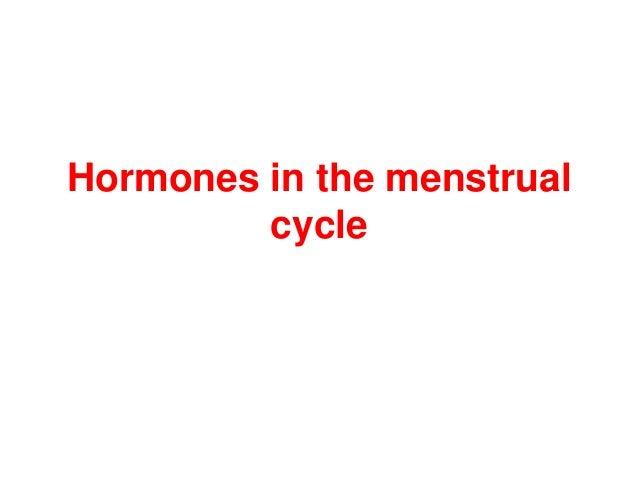 Hormones in the menstrual cycle