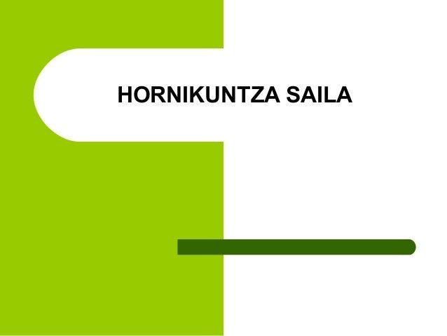 HORNIKUNTZA SAILA