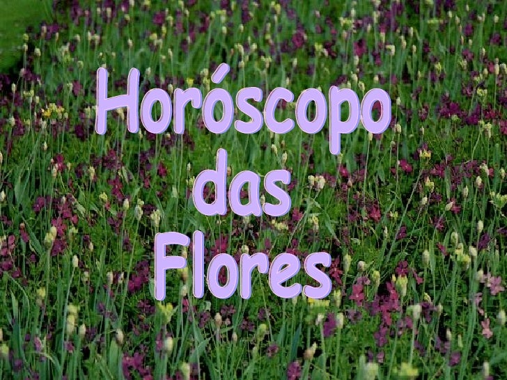 Horóscopo das Flores