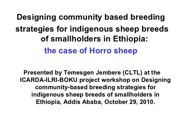 <ul><li>Designing community based breeding  </li></ul><ul><li>strategies for indigenous sheep breeds of smallholders in Et...