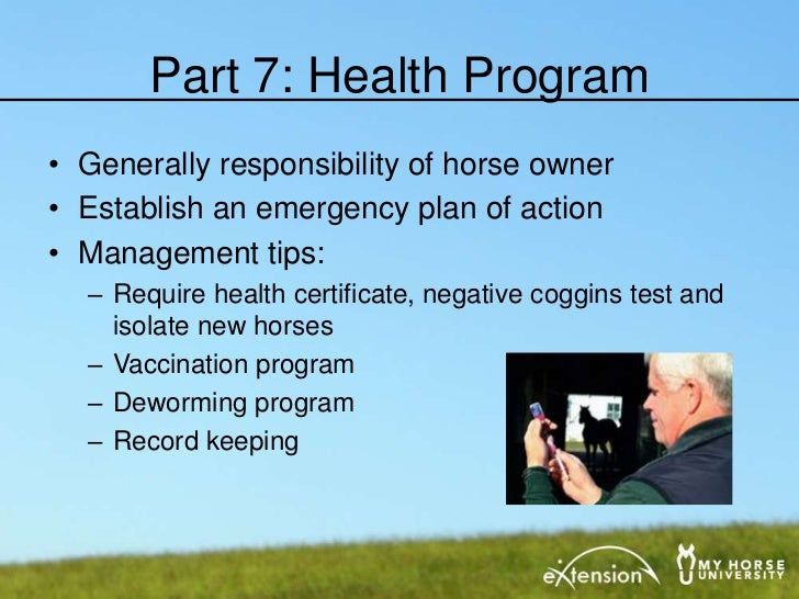 Horse Training Business Plan