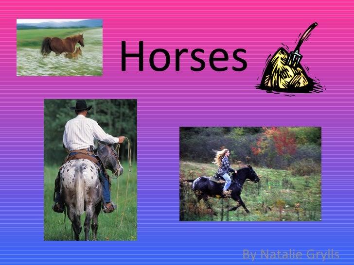 Horses By Natalie Grylls