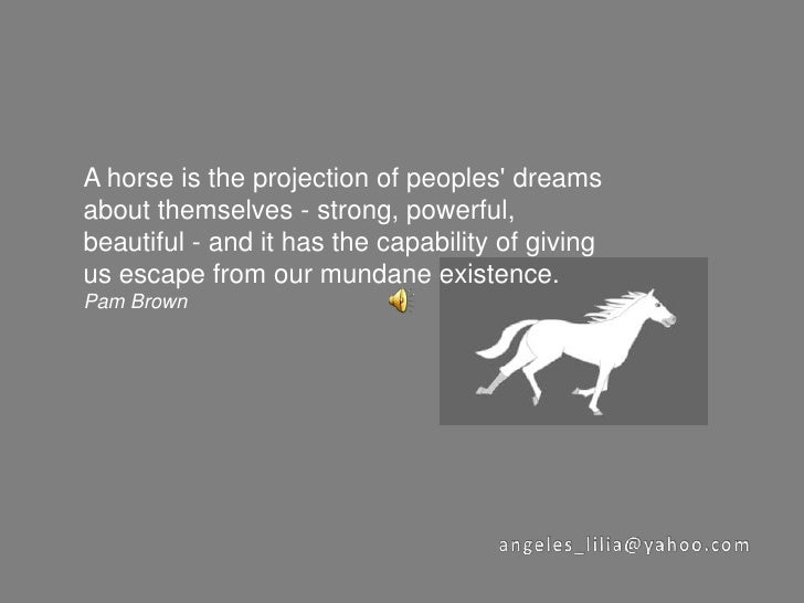 A horse is the projection of peoples' dreams about themselves - strong, powerful, beautiful - and it has the capability of...