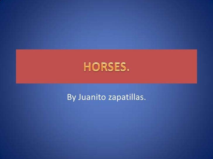 HORSES.<br />By Juanito zapatillas.<br />